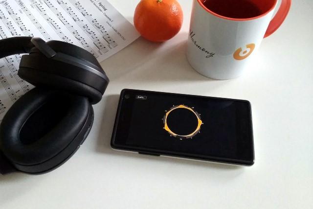 Erholung vom Tinnitus - das bietet die Smartphone-App von In Harmony (Foto: XX)